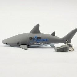USB STICK (32 GB)